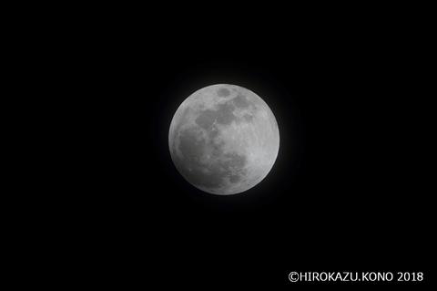 皆既月食0131-1_1.jpg